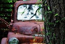 Vintage trucks / by Angela Croissant