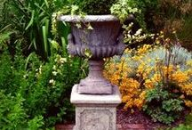 """Garden ~ Containers & Urns / Planting in containers, urns and planters. Exploring shapes and planting arrangements in various light conditions. See also """"Garden ~ Inside"""" / by eClaire9Design"""