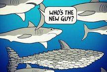 Fisch Fish poisson balik pescado / Fisch Fish poisson balik pescado