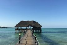 Zanzibar kruideneiland / Zanzibar ligt in de Indische oceaan. Je vindt hier hagelwitte stranden en een azuurblauwe zee. Maar ook de stad Stonetown is een bezoek waard. De stad staat op de werelderfgoed lijst van UNESCO. Verder kan een spicefarm bezoeken of de reuzeschildpadden die op Prison island leven. En natuurlijk is snorkelen ook een van de activiteiten die je op Zanzibar kan doen