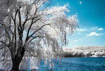 La nature quelle beauté!