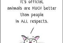 Animals-Cooler Than People:)