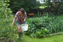 Green Fingered Writer (me)