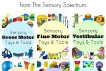 Sensory / Sensory Processing Disorder defined, explained and what to do about specific issues children experience as it relates to their needs.