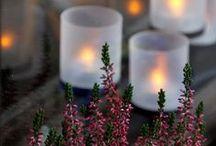 Candles / by Sharlene Mohr