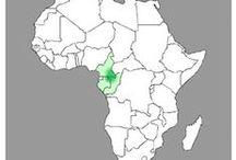 32. Kwele CAMEROON, GABON.