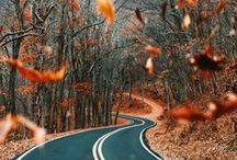 Őszi színek és fények / Szépség keresése, és megtalálása az őszben, DIY ötletek az évszakra vonatkozóan, hangulat festése.
