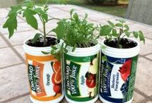 Reduce, Reuse, Recycle / Find creative ways to reuse or upcycle Old Orchard containers and other items otherwise destined for trash or recylcing.