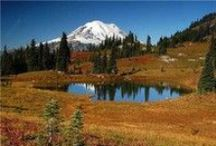 Chinook Pass Scenic Byway / The Chinook Pass Scenic Byway runs from the rolling fields of Enumclaw west of the Cascades to the Naches Valley east of the range. Along the way, this two lane pass wraps around the northeastern flank of iconic Mount Rainier.
