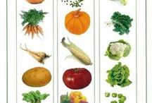 gardening-veggie-fruits- herbs / by Bobbie McCurdy