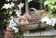 Welcome to my potting shed / Vintage gardening, potting sheds other shabby chic garden delights!