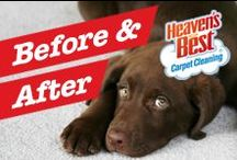 Before and After Photos / Our unique method of carpet cleaning allows your carpet to dry within 1 hour after cleaning. We can take out many of the tough spots and stubborn stains other carpet cleaning businesses leave behind. Our low-moisture, carpet cleaning products work. They are environmentally friendly and safe for your children and pets. 432-268-3392