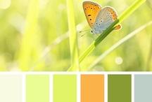 Colors / by Robin Tigli