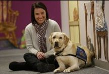 """Buddy Brigade / The """"Adopt a Buddy"""" program offers sponsorships of one or more of the 60 certified pet therapy dogs of the CHKD Buddy Brigade. / by CHKD"""