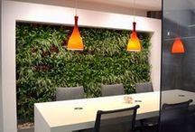 Green Walls  / Green walls from around the world as well as our own walls from the UK - Lots of inspiration
