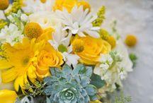 Wedding-ish / Wedding Ideas! / by Shaleah Lorraine