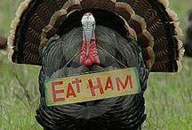 Thanksgiving / by Kathleen Mathena