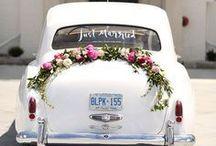 Wedding Car Signs