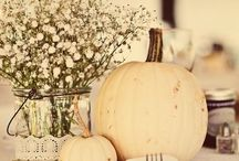 Pumpkin Center Pieces / Pumpkin center pieces, ideal for your Autumn wedding