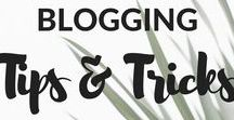 Blogging Tips & Tricks / Why reinvent the wheel? Learn from the best bloggers in the business.