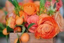 … orange you glad I didn't say Peach?