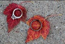 Weddings - Fall Theme / by Mallory Albright