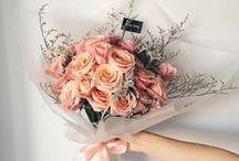 Romantic Florals♡ / ♡