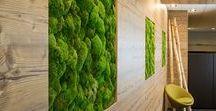 """Greenery / Mit """"Greenery"""" hat Panetone einen frischen und natürlichen Grünton zur Farbe des Jahres 2017 gewählt. Auch im Büro lässt sich grün wunderbar umsetzen. Dabei muss es schon lange nicht mehr die Wandfarbe sein, die Akzente setzt. Febrü bietet eine Vielzahl an Gestaltungsmöglichkeiten, um den frischen und natürlichen Farbton in das Büroumfeld zu integrieren."""