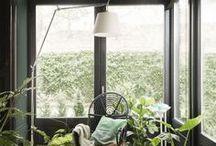 Jungalow Style I Hauptstadt Garten / Ideen zum greenliving und Indoor Gardening. die schönsten Zimmerpflanzen und Tipps zur Pflege und zum Umtopfen