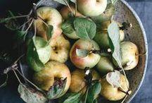 Äpfel | Hauptstadt Garten / Hier dreht sich alle um den Apfel. Mit Äpfeln kann man so tolle Sachen machen! Man kann sie backen, entsaften, trocknen, braten und mit ihnen basteln. Dafür findest Du hier Ideen, Rezepte und Inspirationen. Meine Lieblinge sind Apfelringe, kandierte Äpfel und Bratäpfel