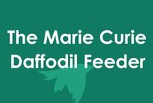 The Marie Curie Daffodil Bird Feeder