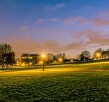 The Royal Parks / A variety of projects in London that we maintain on behalf of Vinci Facilities and the Royal Parks