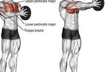Vücut Geliştirme - Bodybuilding / Vücut Geliştirme - Bodybuilding