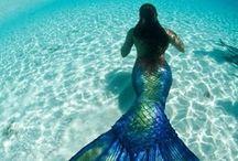 la mer ♡ / by Kristen Renee