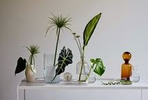 Go Green - Decor Trends / Invite the outdoors in! Here's a look at a couple of ways to incorporate greenery into the home.