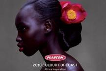 Plascon Colour Forecast 2010
