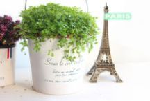 PichShop: Растения и сад