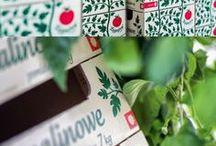 Packaging Food+