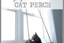 Cosas geniales para gatos