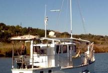 Barcos del Guadiana. 2012 / En nuestra navegación fluvial de este invierno hemos tomado estas fotos de algunos de los barcos mas curiosos que hemos encontrado en el Guadiana.