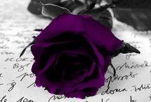 Sometimes...Purple! / by Dawn Jimmerson