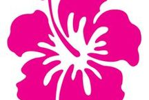 Creative Challenge - Hibiscus / The creative challenge for June 2014 is all about the hibiscus flower.