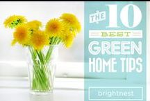 Green at Home / Go green at home! Check out these tips and tricks to save energy, save money and stay healthy.  / by BrightNest
