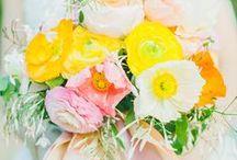 Bright Wedding Inspiration / by Bella Figura Letterpress