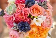 wedding / by Cassie O'Hara