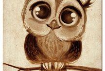 i love owls. / by Cassie O'Hara
