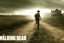 Walking Dead / All time, best series EVER....I need not say more / by Flower Child 1980