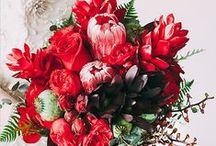 Red Wedding Inspiration / by Bella Figura Letterpress