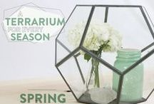 Spring Decor Ideas / Think spring! Brighten up your home decor with creative springtime designs, DIY crafts, and creative ways to make each room special.  / by BrightNest