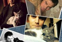Celebrities with Cats / Cats are the best accessories
